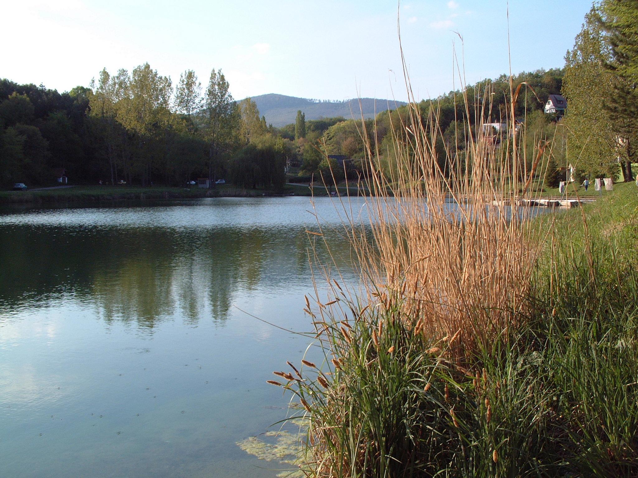 Dombay-tó